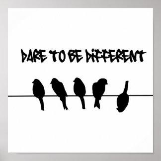 Vogels op een draad - durf verschillend te zijn poster