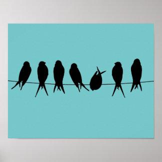 Vogels op een Poster van de Draad