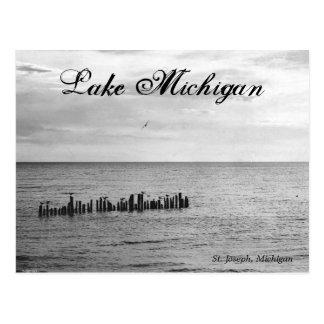 Vogels op het Briefkaart van Michigan van het Meer