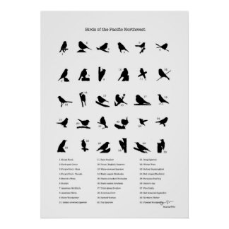 Vogels van het Noordwesten (met namen) Poster
