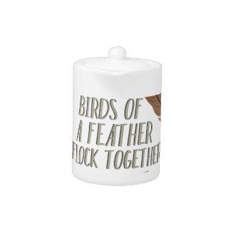 Vogels van Veer