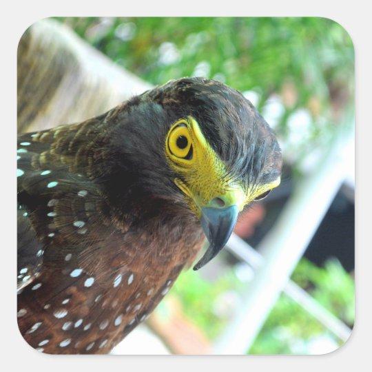 Vogels Vierkante Sticker