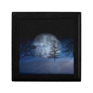 Volle maan onder Treetops Decoratiedoosje