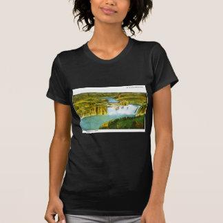 Voor de Oude Oregeon Sleep, Shoeshone Herfsten, T Shirt
