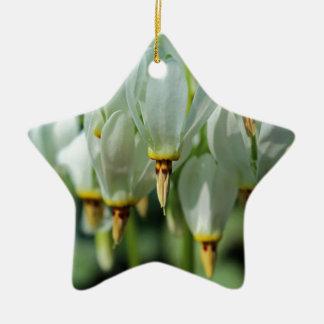 Voorbij Verbeelding Keramisch Ster Ornament