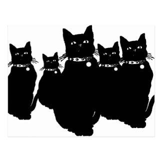 Voorzichtig zijn de Zwarte Kat Briefkaart