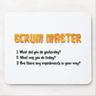 Vragen van de Sprint van het scrum de Hoofd Muismat