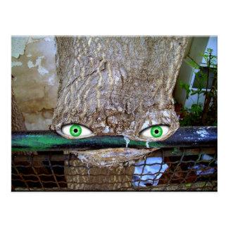 Vreemde boom briefkaart