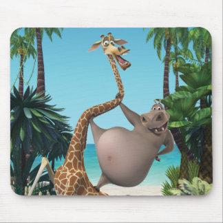 Vrienden Gloria en Melman Muismatten