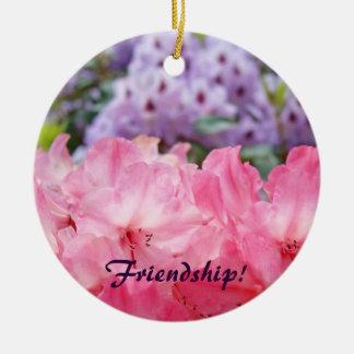 Vriendschap! ornament van de ornament het Roze
