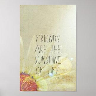 Vriendschap & Zonneschijn Poster