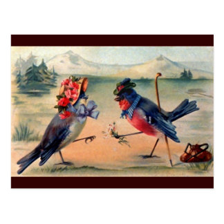 Vrijage van Vogels Briefkaart