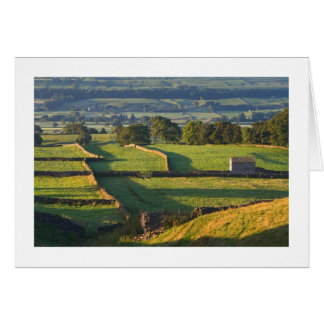 Vroege ochtend, Askrigg, de Dallen van Yorkshire Briefkaarten 0