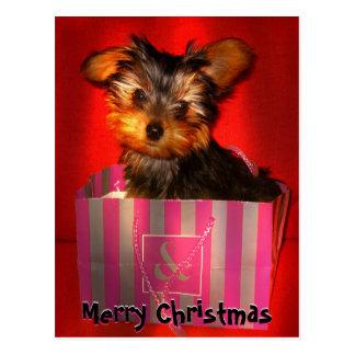 Vrolijke Kerstmis Weinig Klantgerichte Yorkie Briefkaart