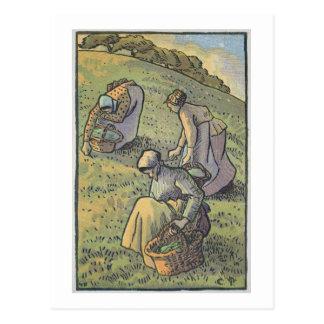 Vrouwen die Paddestoelen, van 'Travaux des Champ Briefkaart
