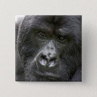 Vulkanen NP, Rwanda, de Gorilla's van de Berg, Vierkante Button 5,1 Cm