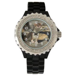 Waakzame Wezel Horloge