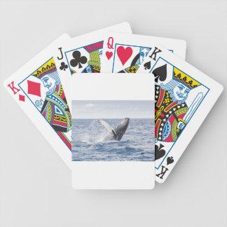 Walvis die het Water overtreden Poker Kaarten