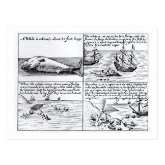Walvisvangst in Spitzbergen in 1611 (gravure) (b/w Briefkaart