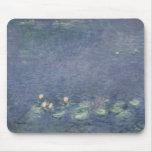 Waterlilies: Ochtend, 1914-18 Muismat