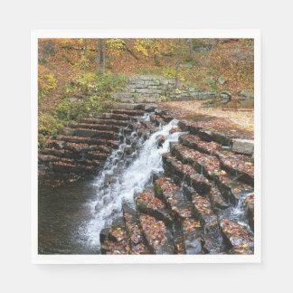 Waterval bij Park van de Staat van de Heuvel van Papieren Servetten