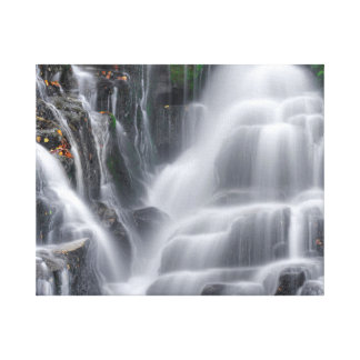 Waterval Canvas Print