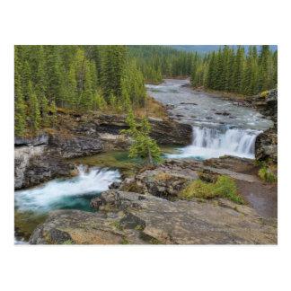 Waterval in de Canadese Rotsachtige Bergen Briefkaart