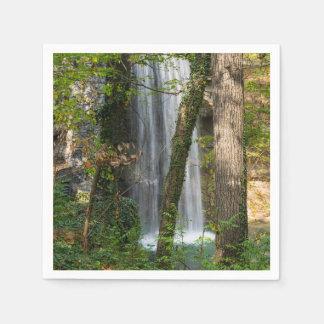 Waterval in het Bos Wegwerp Servetten