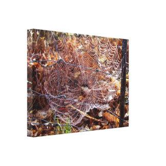 Web van de Europese Kruisspin Verpakte Druk van Canvas Afdruk