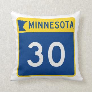 Weg 30 van de Boomstam van Minnesota Sierkussen