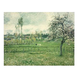 Weide in Eragny, 1885 Briefkaart