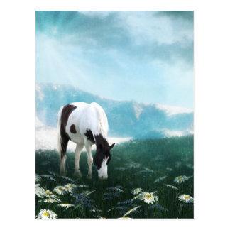 Weidend verfpaard briefkaart