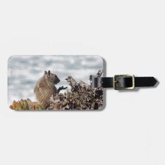 Weinig eekhoorn kofferlabels