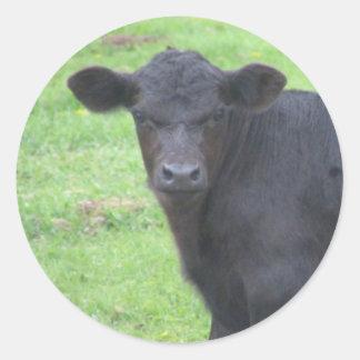 Weinig Zwarte Stier Ronde Sticker