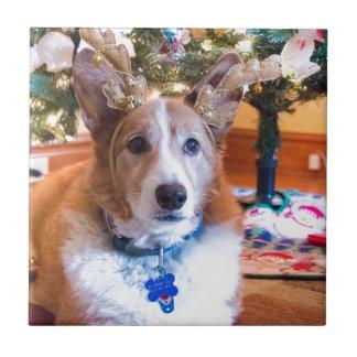 Welse Kerstmis Corgi van Pembroke Tegeltje