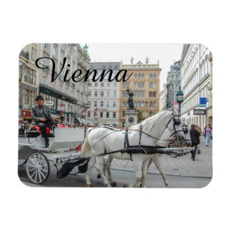 Wenen Oostenrijk Magneten