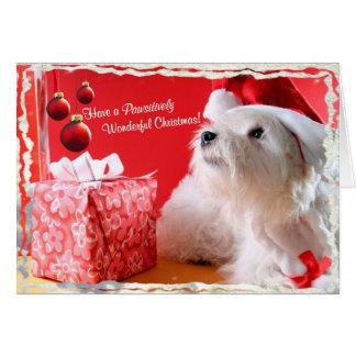 Wensen 4 van Kerstmis van Westie Prachtige - pas Briefkaarten 0