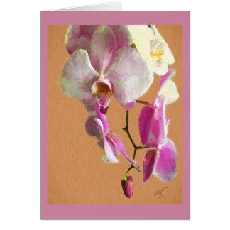 Wenskaart met Orchidee