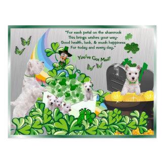 Westie u heeft Post - St Patrick de Versie van de Briefkaart