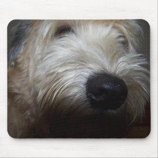 Wheaten Gezicht van de Hond van Terrier Muismat
