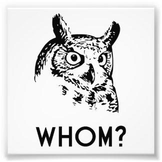 Who van Hoo die de Uil van de Grammatica Fotografische Afdruk