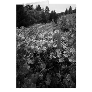 Wijngaard en Heuvels, de Wijngaard van de Wenskaart