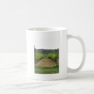 Wijngaard in de lente. Toscanië, Italië Koffiemok