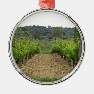Wijngaard in de lente. Toscanië, Italië Zilverkleurig Rond Ornament