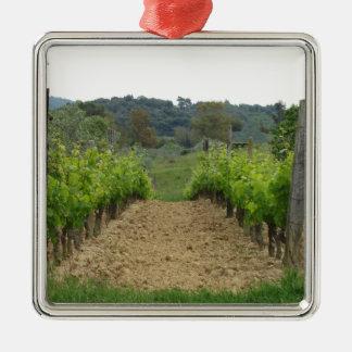 Wijngaard in de lente. Toscanië, Italië Zilverkleurig Vierkant Ornament