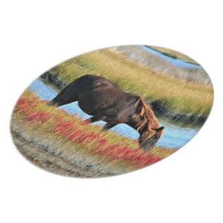 Wild paard die in The Field eten Melamine+bord