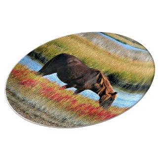 Wild paard die in The Field eten Porselein Bord