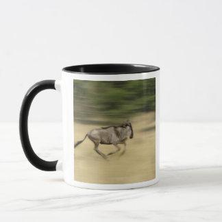 Wildebeest in motie, taurinus Connochaetes, Mok