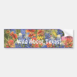 Wildernis over Texas! De Sticker van de bumper