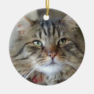 Wilg de kat rond keramisch ornament